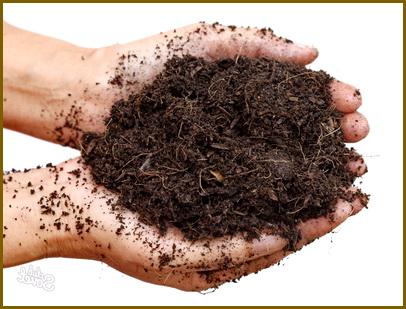 Приготовление почвы для рассады